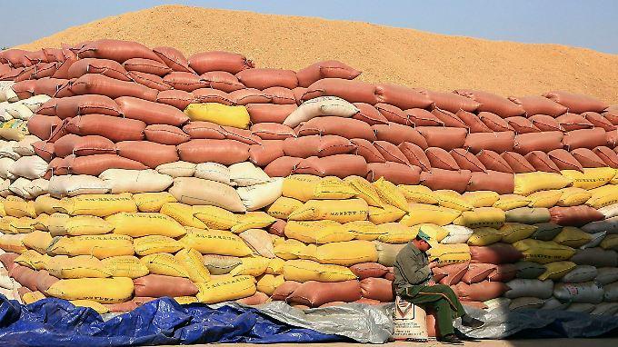 Hier fällt garantiert kein Sack Reis um: Gut gestapelt wartet dieser Reis auf seine Weiterverarbeitung. In China sollen sich die Erntebedingungen zukünftig verbessern.