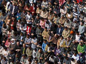 Demonstranten beim Freitagsgebet auf dem Tahrir-Platz in Kairo.