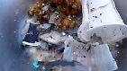 ... Indischen Ozean ist das Wasser mit größeren und kleineren Plastikteilen durchsetzt.