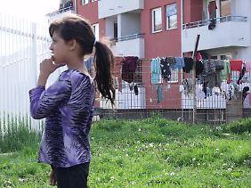 In Deutschland setzen sich zunehmend auch Nachbarn und Freund für die Roma-Familien ein.