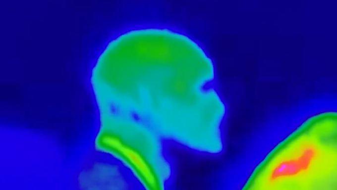 """Das angebliche """"Alien"""" aus dem Video."""