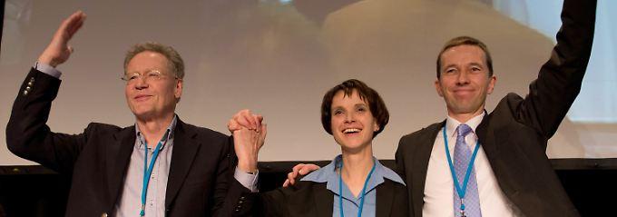 Die AfD-Sprecher Konrad Adam, Frauke Petry und Bernd Lucke (von links nach rechts).