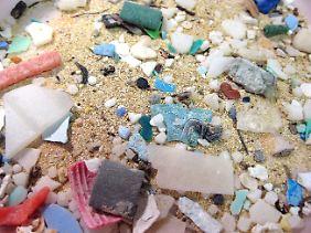 Im Meer wird das Plastik zu kleinsten Teilchen zerrieben. Diese schwimmen auf der Wasseroberfläche, aber auch noch 30 Meter darunter. Vögel und Fische verwechseln die Partikel mit Nahrung.