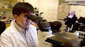 Hoffnung für die Medizin?: Klonen von Stammzellen bietet neue Möglichkeiten
