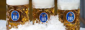 Zu kühl, zu nass, zu wenig Bier: Wetter macht Brauern zu schaffen