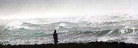 Die Meere haben sich verändert. Schuld ist der Mensch.