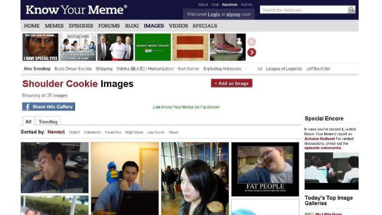 Datenbank für Internetphänomene: Memes verbreiten sich im Netz - n-tv.de