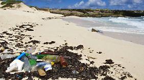 Lebensgefahr für Menschen und Tiere: Deutsche Gewässer mit Plastik verschmutzt