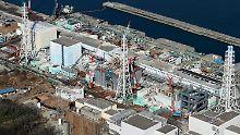 Gigantisches Projekt für Fukushima: Eiswälle sollen Grundwasser schützen