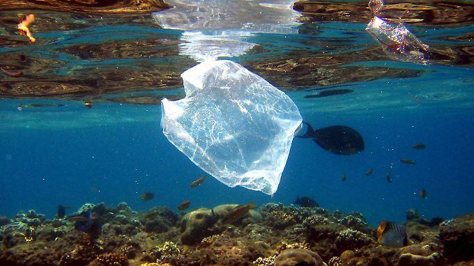 Mehr als 6,4 Millionen Tonnen Plastik landen jedes Jahr in den Ozeanen.