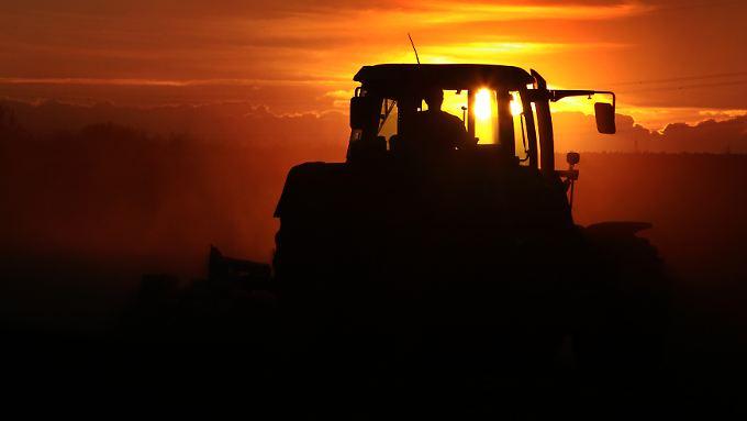 Dem Sonnenuntergang entgegen? Experten warnen vor einer Preisblase bei Ackerland in Deutschland.