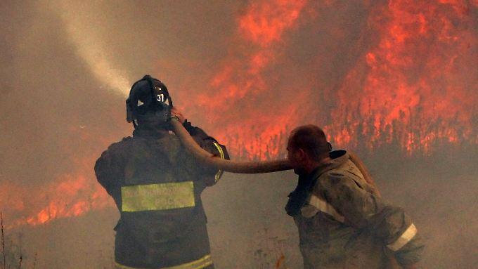 Häufig kommen die Feuerwehrleute nicht gegen die Flammenwände an.
