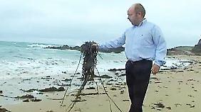 Großes Interesse aus der Wirtschaft: Franzose verwandelt Algen in Plastik