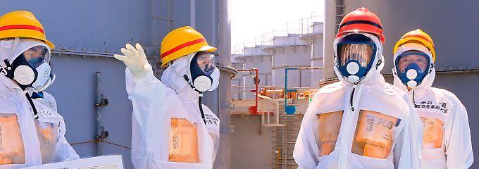 Japans politische Spitze beim Ortstermin in Fukushima im vergangenen Herbst: Premierminister Shinzo Abe (2.v.r.) trägt den roten Helm.