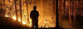 Globale Luftströmungen aus dem Takt: Ursache für Hitzewellen entdeckt