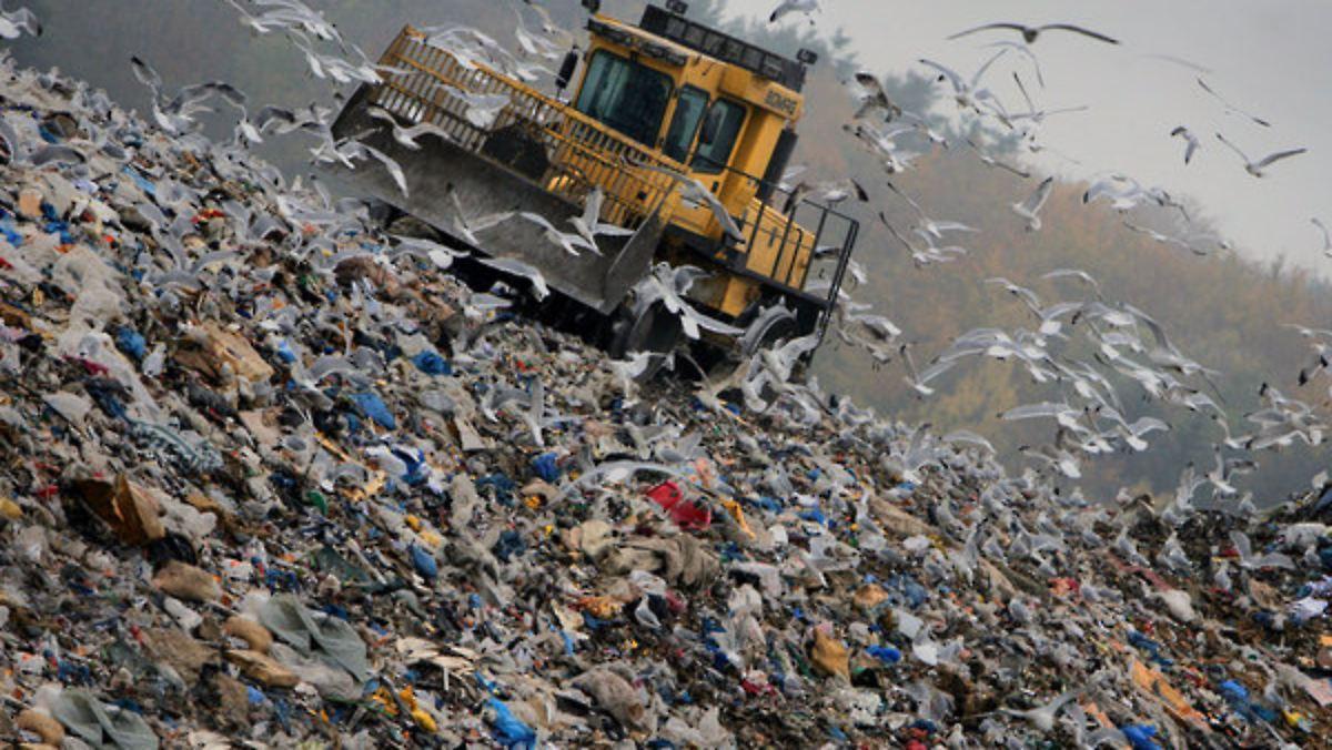 Müllproduktion
