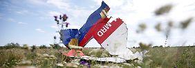 Noch in der Luft auseinandergebrochen: Ein Wrackteil der Boeing 777 der Malaysia Airlines in einer Wiese bei Grabovo.