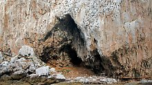 Fundsache, Nr. 1271: Höhlenkunst von Neandertalern in Gibraltar