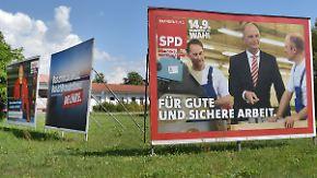 SPD liegt in Brandenburg vorne: CDU und Linke rangeln um Platz zwei