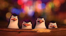 """Fanta Vier, Madagascar und Agenten: """"Wir sind Hollywood-Pinguine"""""""