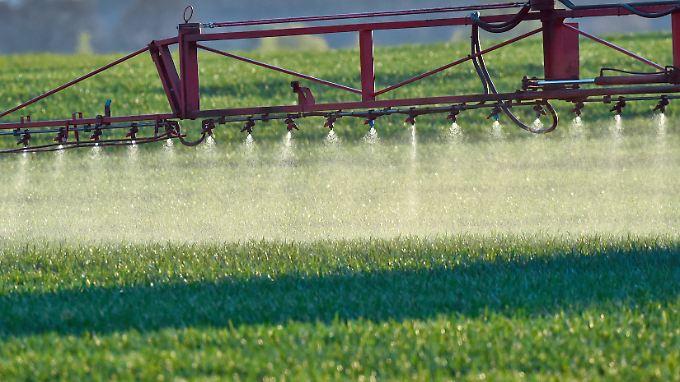 Pestizide, der neue Hoffnungsträger der Grünen - im übertragenen Sinne.