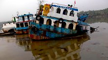Tankerunfall in Bangladesch: Ölpest bedroht Irawadi-Delfine