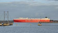 Giganten der Meere: Das sind die 30 größten Schiffe aller Zeiten