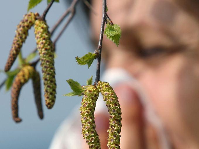 Eine der häufigsten Allergien ist die Pollenallergie, die auch als Heuschnupfen bezeichnet wird.