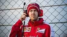 """Experte Danner analysiert F1-Tests: """"Achtung, Ferrari lebt wieder, Vettel ist da!"""""""