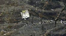 Germanwings-Katastrophe: Die Folgen von Todesflug 4U9525