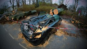 Umgekippter Baum, demolierte Autos: Wer haftet bei Sturmschäden?