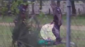 Video enthüllt kaltblütigen Mord: US-Polizist nach Schüssen auf Familienvater angeklagt