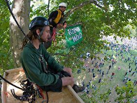 Robin-Wood-Aktivisten sitzen noch immer im Baum.
