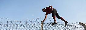 Vor allem Syrer fliehen: Mehr Flüchtlinge erreichen Europa