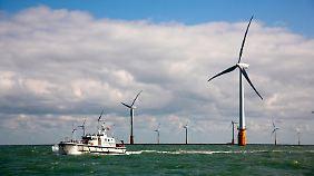 Branche boomt: Vattenfall eröffnet größten Windpark