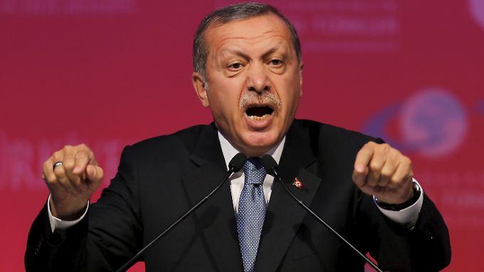 In der Türkei werden vermehrt Journalisten, Blogger und einfache Bürger wegen Präsidentenbeleidigung vor Gericht gebracht. Präsident Erdogan zeigt sich unnachgiebig.