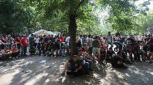 Flüchtlingsansturm in Deutschland: Beck fordert mehr Integrationskurse