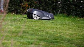 Mähroboter erfreuen sich zunehmender Beliebtheit bei Gartenbesitzern.