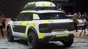 Mini-SUV mit dem gewissen Extra: Wird der Cactus Citroëns nächstes Kultauto?