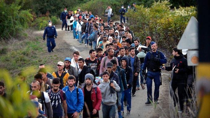 Flüchtlinge an der ungarischen Grenze bei Zákány, nachdem sie von kroatischen Behörden nach Ungarn weitergeleitet wurden.