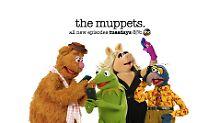 """""""The Muppets"""" feiern US-Premiere: Kermits Leben? Eine in Speck gerollte Hölle"""