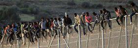 Zahl der Anträge steigt stark: Immer mehr Nordafrikaner beantragen Asyl