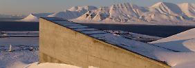 Global Seed Vault angefragt: Tresor für den Weltuntergang wird geöffnet