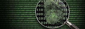 BSI-Lagebericht deckt auf: Diese Software hat die meisten Lücken