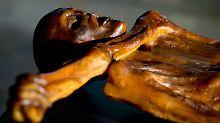 """Großer Kult um Eismumie: """"Ötzi-Aufpasser"""" kämpft gegen Verfall"""