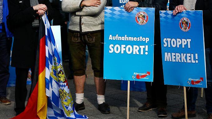 Die AfD positioniert sich deutlich gegen Merkels Kurs in der Flüchtlingskrise.