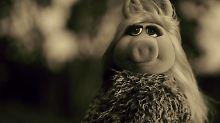 """Ein Schwein sagt """"Hello"""": Miss Piggy macht auf Adele"""