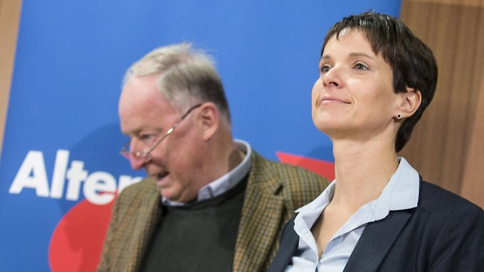 Zufriedene Gesichter an der Parteispitze: AfD-Chefin Frauke Petry und ihr Vize Alexander Gauland.