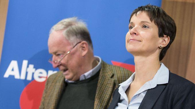 Die AfD unter der neuen Chefin Frauke Petry findet in die Erfolgsspur zurück.