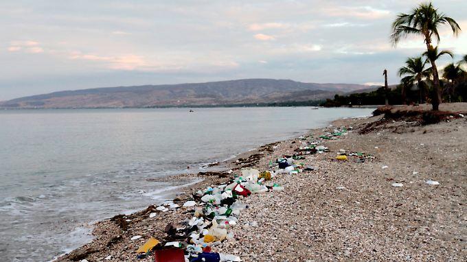 Meerestiere und Seevögel verwechseln den Plastikmüll nicht selten mit Nahrung und verenden.